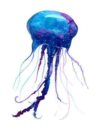 해파리 수채화 그림. 메두사의 그림 흰색 배경, 다채로운 문신 디자인입니다.
