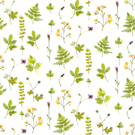 simple purity flowers: Natural background with wild flowers, plants and fern leaves. Watercolor botanical seamless pattern with hand painted illustrations. Nature inspired texture