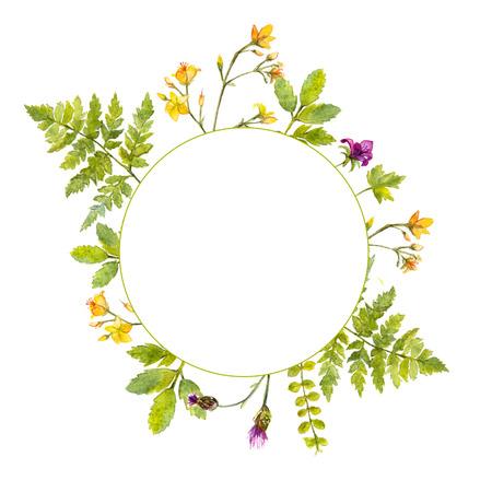 그린 수채화 녹색 식물과 야생 꽃 프레임 라운드. 천연 화장품, 봄과 여름 이벤트에 대한 자연에서 영감 국경
