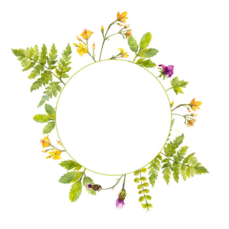 Round frame with painted watercolor green plants and wild flowers. Nature inspired border for natural cosmetics, spring and summer events