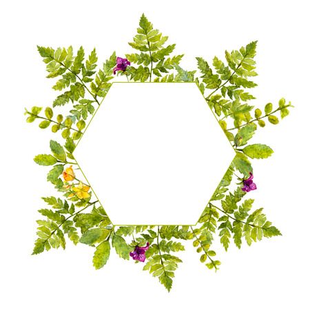 Geometry frame with painted watercolor green plants and wild flowers. Nature inspired border for natural cosmetics, spring and summer events