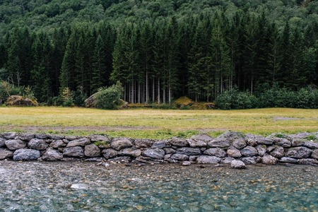 Nature landscape with pine forest, beautiful transparent river and stones. Norway scenery.