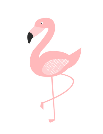 Standing flamingo illustration. Pink tropical birg stands on one leg isolated on white background.