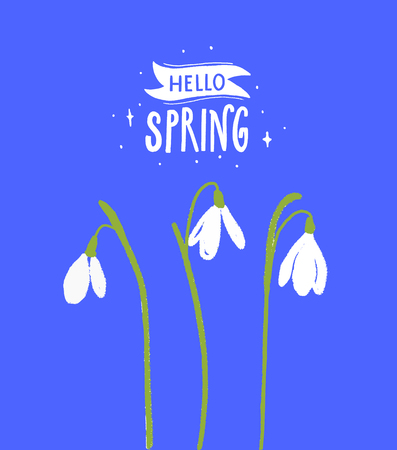 Hello spring calligraphy inscription with white snowdrop flowers. Floral illustration with modern text.