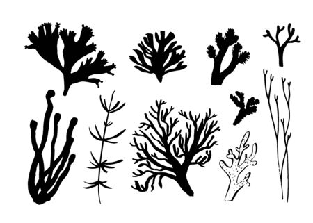 Seaweed, coral and algae set. Different silhouettes of underwater fauna. Black hand drawn vector illustration Ilustracje wektorowe