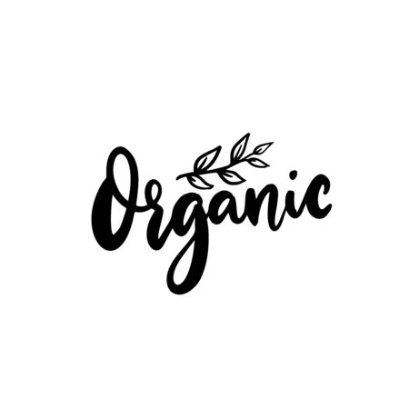Organic badge, modern calligraphy word and hand drawn plant branch. Black vector text isolated on white background.