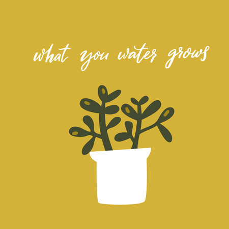 What you water grows. Inspirational quote, handwritten wisdom. Hand drawn doodle illustration of crassula plant in pot on green background. Motivational card vector design.