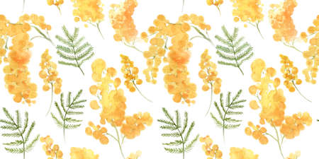 Yellow acacia mimosa background, seamless pattern. Watercolor floral design. Tileable background for textile, wrapping paper, wallpaper design.