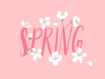 Spring word decorated with white tree flowers on pink background. Cherry blossom card vector illustration.