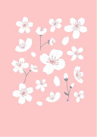 Spring tree blossom art. White flowers on pink background. Cherry blossom illustration for greeting card design. Minimalism asian inspired set.