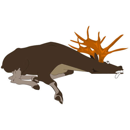 lying in: dead moose lying on the ground.Design element in vector Illustration