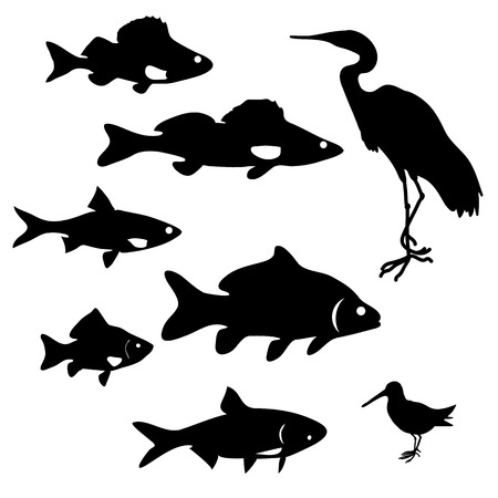 white salmon river: silhouettes of river fish and herons.Set of design elements in vector
