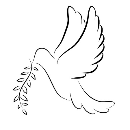 holy leaves: Dove of Peace Vector illustration Illustration