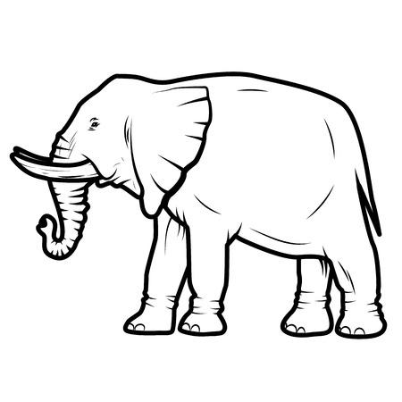 siluetas de elefantes: ilustraci�n vectorial de elefante aislado en fondo blanco