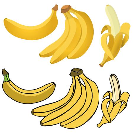 platano caricatura: Conjunto de plátanos amarillos. Individual Banano, Plátano pelado, Manojo de plátanos. Vectores