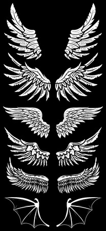 bird wing: Heraldic wings set for tattoo or mascot design