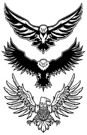 halcones: Conjunto de �guilas vectoriales. icono, insignia o etiqueta plantilla de dise�o. Ilustraci�n del vector. Deporte plantilla icono de equipo.