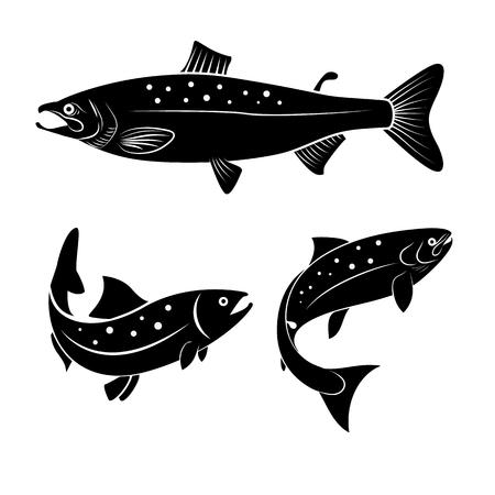 escamas de peces: Conjunto de pescados de color salm�n aislado en el fondo blanco. elemento de dise�o de etiquetas. Vectores