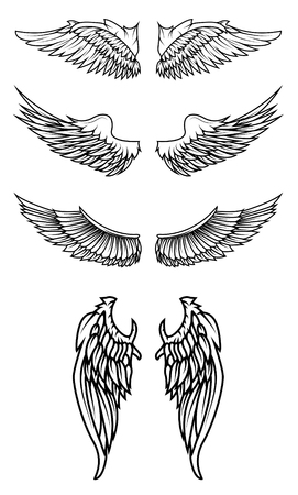 tattoo wings: Set of the wings in vector. Design elements for logo, badge or label. Vector illustration. Illustration