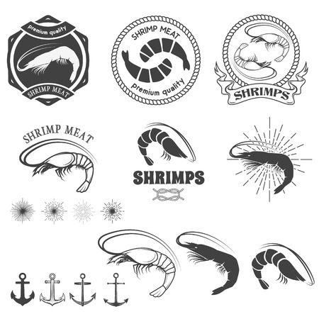 camaron: Conjunto de etiquetas de la carne camarones, insignias y elementos de diseño de vectores. Sunburst, anclas, las etiquetas de plantillas para logotipos de los mariscos. Ilustración del vector.