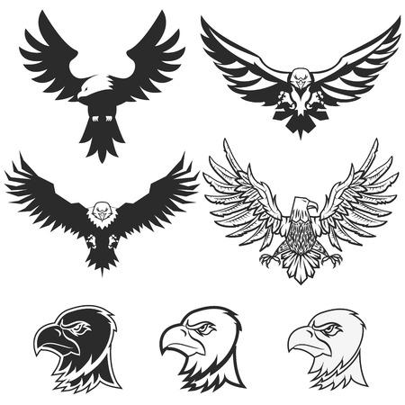 Set of eagles. Design elements, label, emblem, badge template.