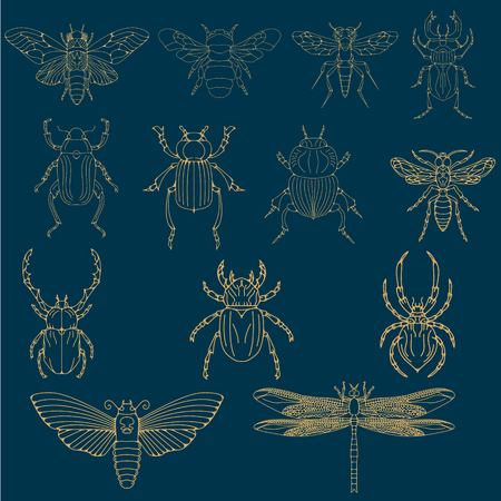 Set of the insects.