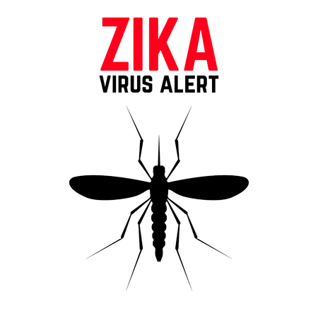 danger: Zika virus alert. Moskit with phrase Zika virus alert. Danger for pregnant. Zika virus.