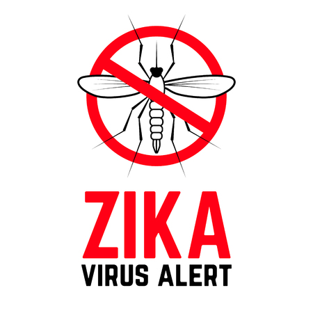 aedes: Zika virus alert. Moskit with phrase Zika virus alert. Danger for pregnant. Zika virus.