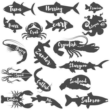 crucian: Set of seafood silhouettes with lettering. Design elements for label, logo, emblem, badge, sign. Marine life. Set of fish silhouettes. Illustration