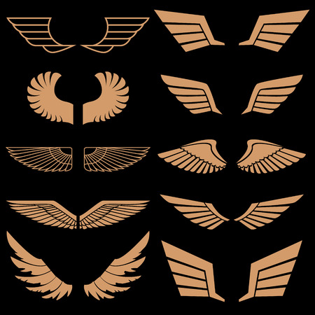 airplane wing: Set of wings in vector. Gold style vector wings. Wings icons. Wings logo. Vector design element. Illustration