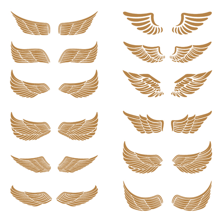 elite sport: Set of the emblems with wings in gold style isolated on white background.  Design element , label, emblem, sign. Vector illustration.
