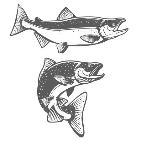 Salmon Silhouetten. Frische Meeresfrüchte. Lachsfischen. Design-Element für das Label, Emblem, Zeichen. Illustration. Vektorgrafik