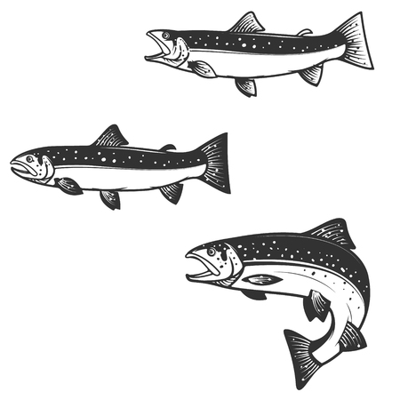 Set of trout silhouettes. Design element for  label, emblem, sign, brand mark for fishing camp or team. illustration. Vectores