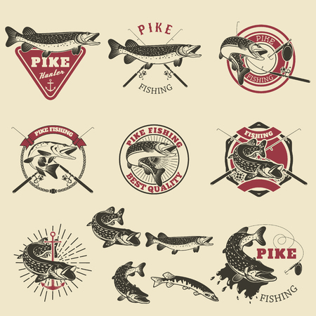 Pike fishing labels. Fishing club, team emblems templates. Vector illustration.  イラスト・ベクター素材