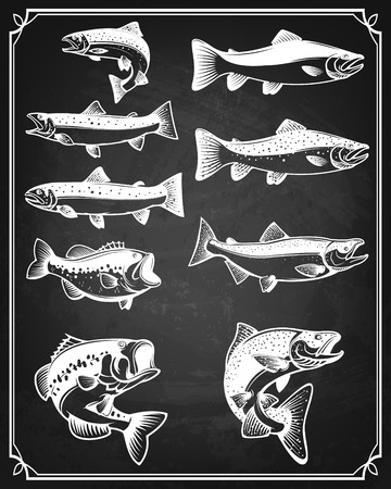 jig: Set of trout, salmon and perch fish icons on grunge background. Design elements for restaurant menu, poster. Vector illustration.
