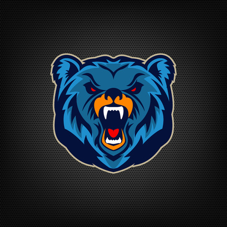 territorial: Angry bear head. Sports team mascot. Vector illustration. Illustration