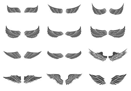 Set van vector vleugels geïsoleerd op een witte achtergrond.