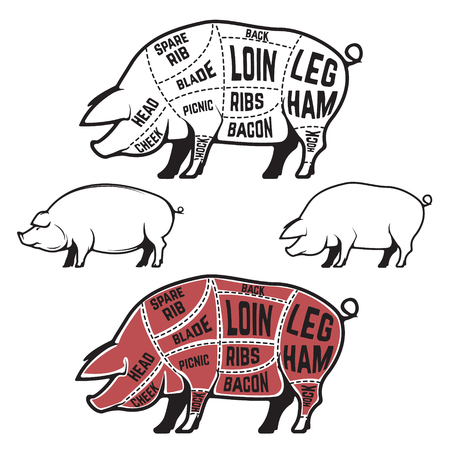 carver: Butcher diagram, scheme and guide - Pork cuts.  Set of pig silhouettes isolated on white background