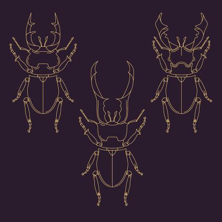 prin: Conjunto de escarabajos de cuernos en el estilo de línea. Elementos del diseño en vectores.