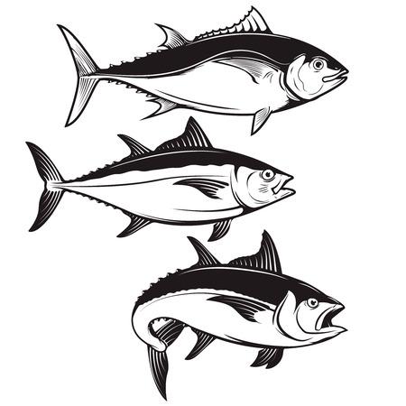 白い背景に分離されたマグロの魚アイコンのセットです。ロゴ、ラベル、紋章、記号、バッジのデザイン要素です。ベクトルの図。  イラスト・ベクター素材