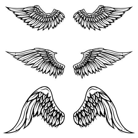 Set of vintage vector wings isolated on white background. Design elements , label, emblem, sign, brand mark. Vector illustration. Ilustrace