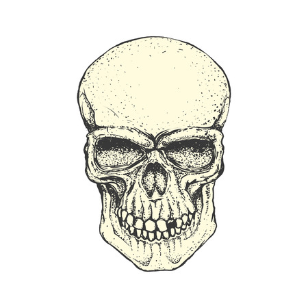 Human skull on white background. Design element for logo, label, Reklamní fotografie - 84511484