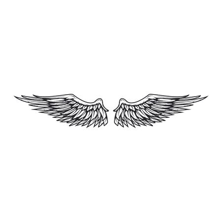 Wings isolated on white background. Reklamní fotografie - 84511575