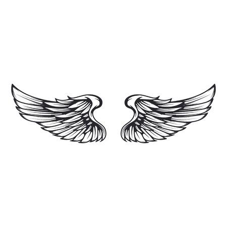 Wings isolated on white background. Reklamní fotografie - 84511607