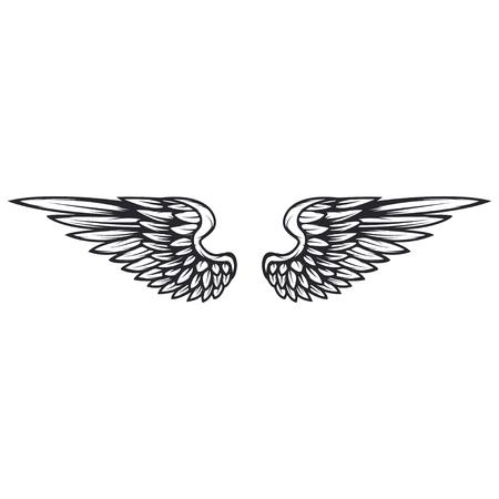 Wings isolated on white background. Reklamní fotografie - 84511654