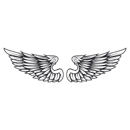 Wings isolated on white background. Reklamní fotografie - 84511653