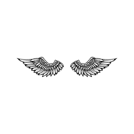 Wings isolated on white background. Reklamní fotografie - 84511658