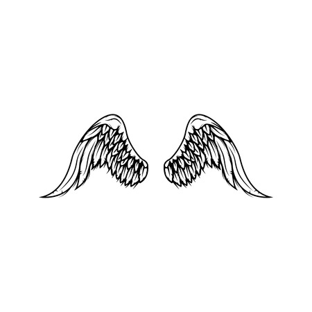 Wings isolated on white background.
