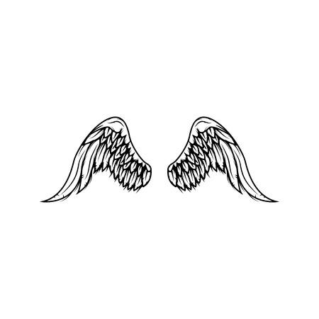 Wings isolated on white background. Reklamní fotografie - 84511657