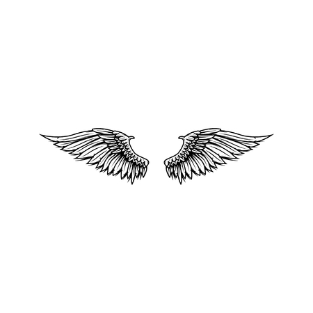 Wings isolated on white background. Reklamní fotografie - 84511655